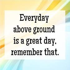 Image result for everyday is a great day