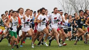 Image result for wisconsin badgers xc
