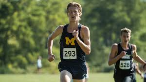 2019 Michigan Men's Cross Country Awards and Honors - University ...