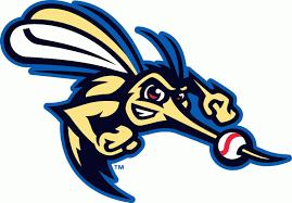 Sugar Land Skeeters Cap Logo (2012) - | Animal logo, Logos, Logo ...